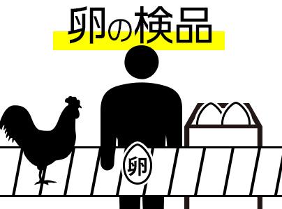 卵の検査・検品