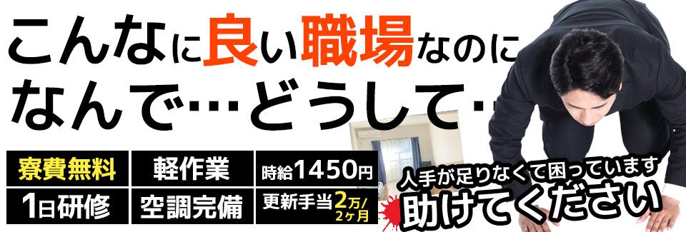 ★寮費無料★箱に入れるだけの軽作業です! どうか応募してください!★1,450円!★