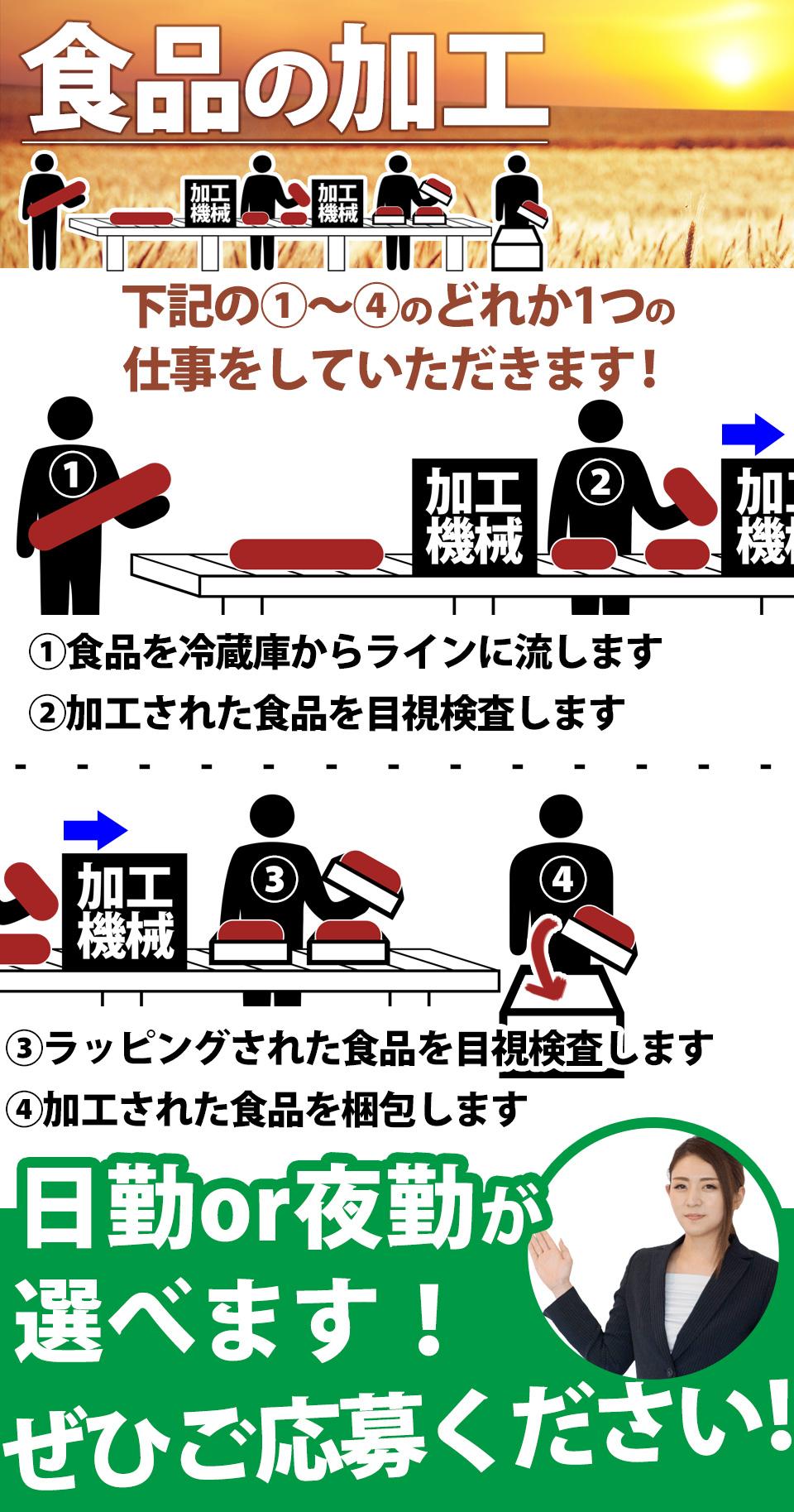 食品の投入or検査or梱包 愛知県豊橋市の派遣社員求人