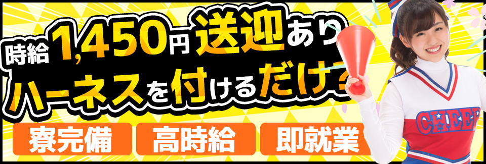 イスにハーネスを付ける 愛知県豊橋市の派遣社員求人