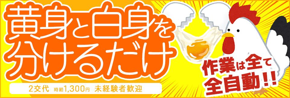 卵割り機械オペレーター 愛知県豊田市の派遣社員求人
